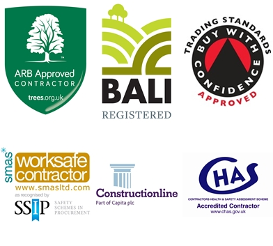 Bawden Tree Care Accreditations