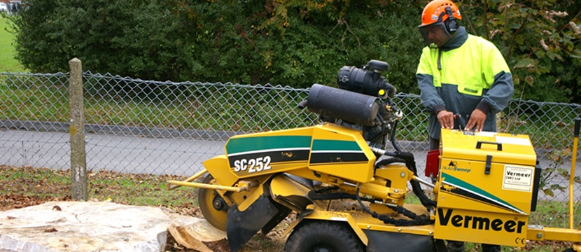 Bawden Tree Care Stump Grinding Removal Specialists