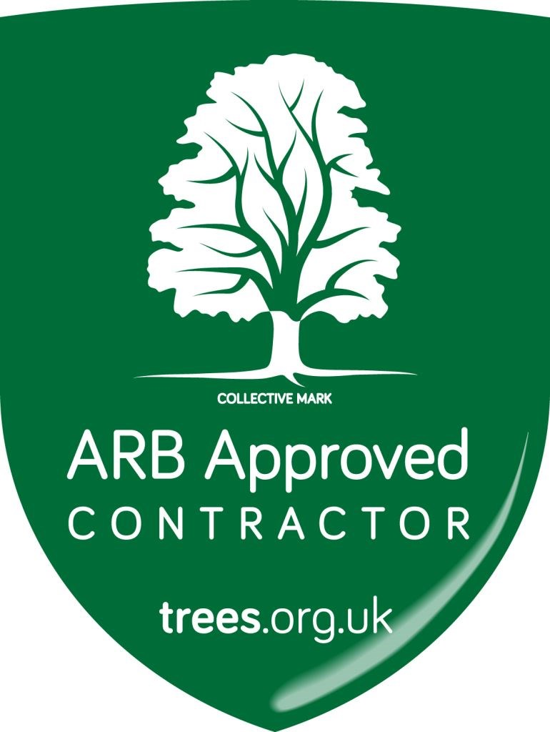 We are Arboricultural Association Approved Contractors!