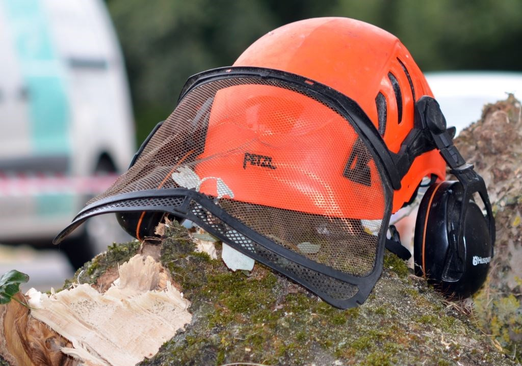 Bawden Tree Care supports new Arborists Apprenticeships